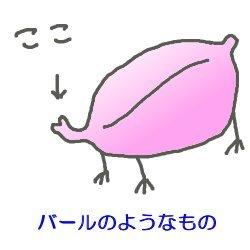 20080825_001.jpg