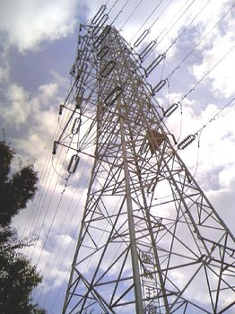 20081117001.jpg