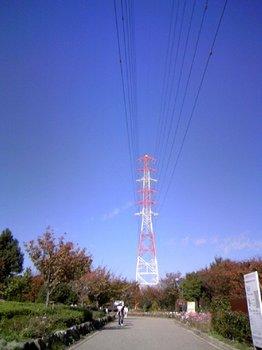 20081117002.jpg