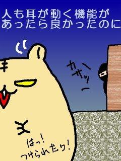 20090511mimi.jpg