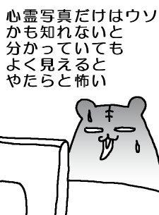 20091109shinrei.jpg