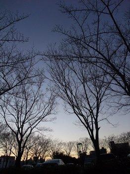 20120109tasogare.jpg