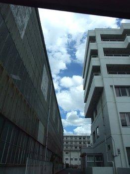 20120806natsuzora.jpg