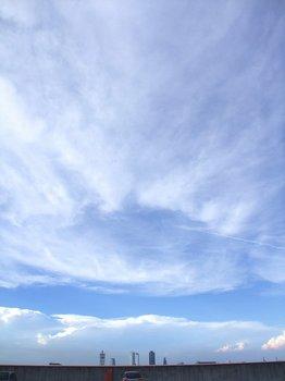 20090810toshin03.jpg